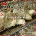 Käfig / Uganda Geflügelfarm Automatische Hühnerschicht Käfig
