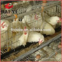 Cage / Uganda Poultry Farm jaula automática de capa de pollo