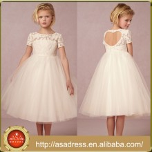 BHL08 Heart Back Girl Party Gowns Princess Short Sleeve High Collar Lace Short Flower Girl Tulle Dress