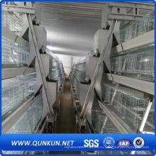 Клетка цыпленка из Китая фабрики