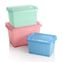 Fashionable Crystal Plastic Storage Box for Storage (SLSN049)