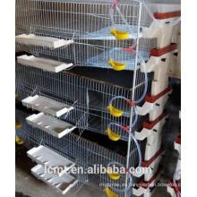 Tipo H de malla de alambre vertical de jaulas de codornices liaocheng fábrica de jaulas de cría