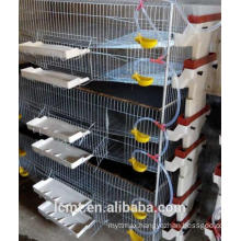 H type vertical mesh wire quail cages liaocheng breeding cage factory