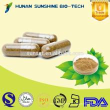 Capsules végétales d'extrait de grain de café vert médicinal de fines herbes 100% naturel Acide chlorogénique pour la fonction de poids perdue