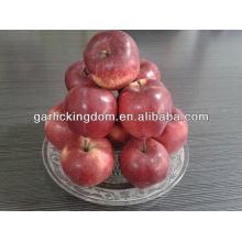 Красное вкусное яблоко 100-125 18 кг