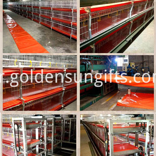 Chicken Manure Conveyor Belts