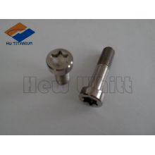high strength titanium bolt DIN6921 torx head