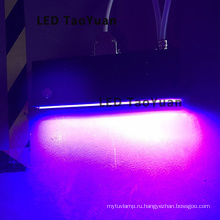 Ультрафиолетовый светодиод, высокая интенсивность облучения печатать вылечить решений 395nm