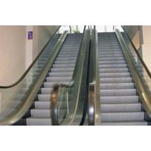 Фуджи Лифт эскалатор
