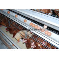 Agricultural Tool Battery Layer Broiler Chicken Cage on Sell