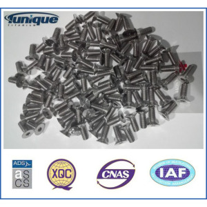 Factory Supply Good Quality Gr2 Titanium Screws