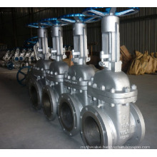 Stainless Steel 304/316 Gate Valve with ANSI Standard
