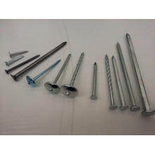Cheap Concrete nails/Steel concrete nails/Clavos de concreto