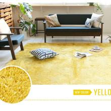 design moderne maison salon décoration tapis et carpettes