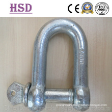Large Dee Shackle, European Type, JIS D Type, Us Type Forged Shackle