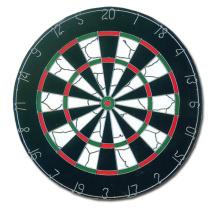Professionelle Flocked Dartboard (FD-001)