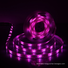 Waterproof Neon Flex Outdoor Flexible 220v Lights Cob Light Dimension W12*l5000 Mm Wholesale Led Strip Smd 5050 Rgb