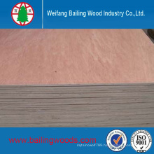 Okoume/Bintangor Commercial Plywood with Good Quality