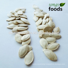 Edible Shine Skin Pumpkin Seeds In Shell