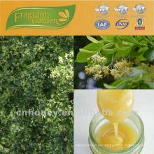 Precios naturales de la miel de tilo Linden