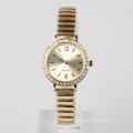 Reloj de señora reloj de lazo de la plata y del acero inoxidable del acero inoxidable