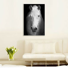 Horse Canvas Paintings with floater frame