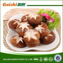 2015 colheita pacote a granel China cogumelos shiitake secos