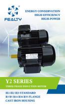 Y2 series motor