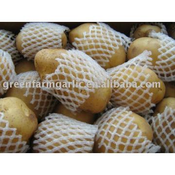 Hollande de pommes de terre fraîches