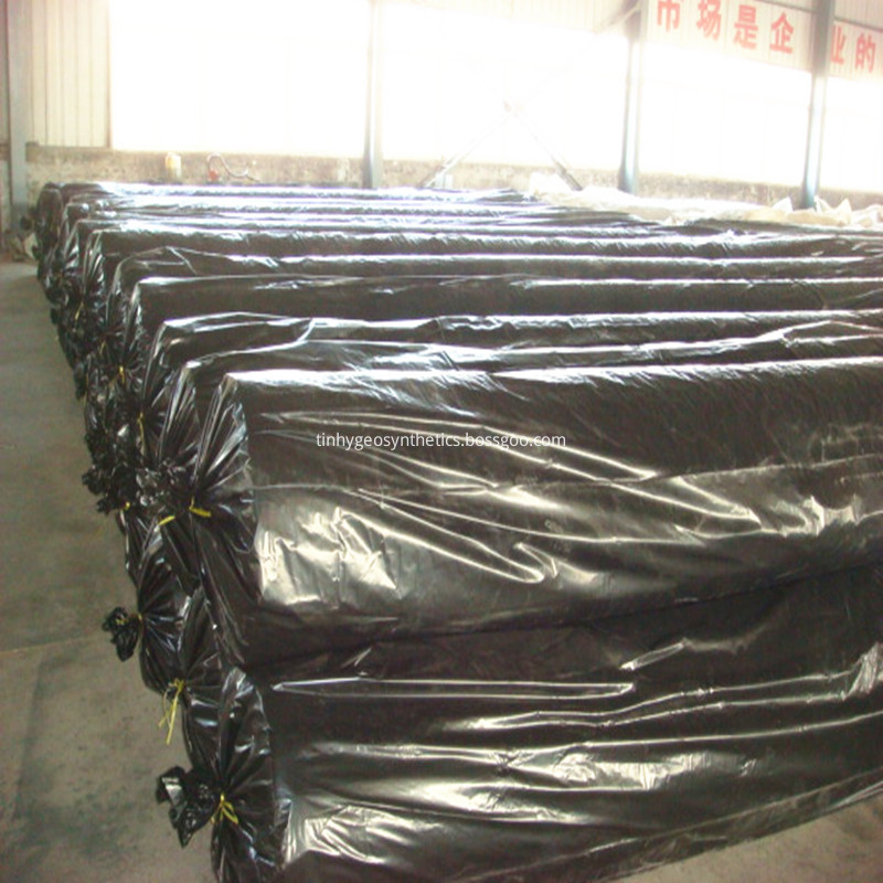 HDPE geomembrane for wastewater treatment
