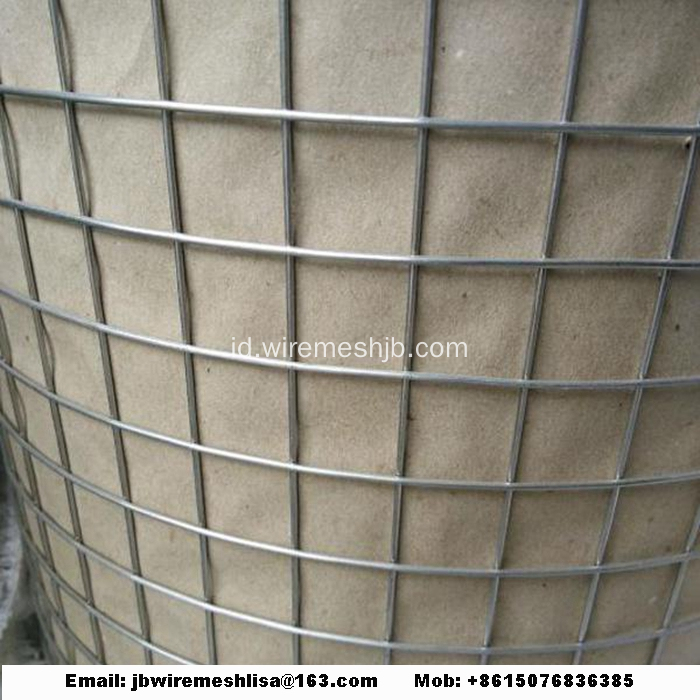 Dilas wire mesh galvanis dilas wire mesh roll