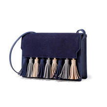 Fashion Tassels Crossbody Bag Wzx23035