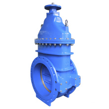 Bs5163 Ductile Iron Gate Valve with by Pass