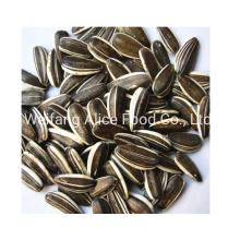 Wholesale Sunflower Seeds Cheap Price Sunflower Seeds 361, 363, 5009, 601