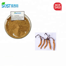 SOST Chinese Supply Cordyceps Sinensis Extract Powder for Anti-cancer