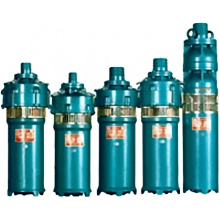 Submersible Electric Pond Pump (QS)