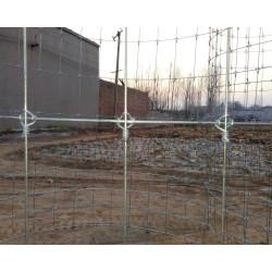 Rural High Tensile Livestock Fencing