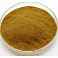 Échantillon gratuit extrait de fines herbes de chélidoine 10: 1