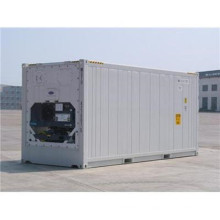 RC-55 Refrigerated Steel Storage Container