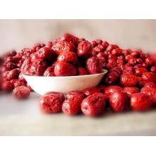 Chinesische rote Jujube, organische getrocknete Datum, chinesische Medizin