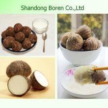 Supply 100% Mature Fresh Taro From China