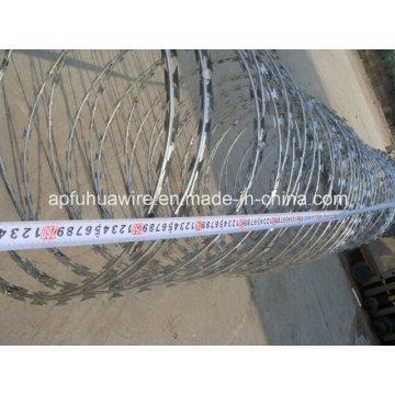 Beautiful and Safety Galvanized Razor Wire