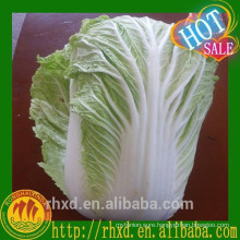 2015 New Harvested Fresh Cabbage / Chinese Cabbage