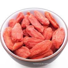 Ningxia Dried Goji Berry/bulk dried wolfberry