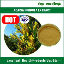 100% Natural & Pure Acacia Rigidula Extract with Low Price, Factory Supply Acacia Rigidula Extract