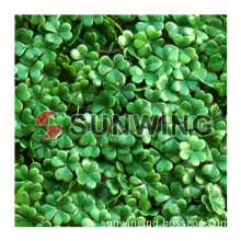 hot selling artificial boxwood hedge for garden decorative