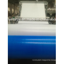 African Finished PE Tarpaulin Sheet with Grommets, 4m by 5m Standard Size&Blue/White Plastic Tarpaulin Truck Cover, PE Tarp Sheet, Poly Tarp Cover
