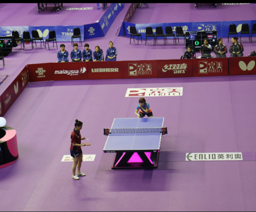 Purple Table Tennis Flooring