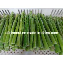IQF Grüner Spargel (EU-Qualität)