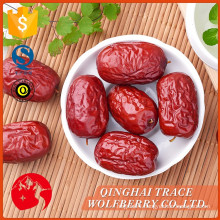 Best price superior quality chinese dried dates